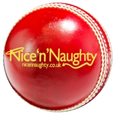 NnN Cricket Ball