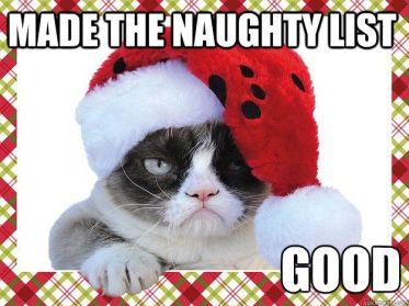 a3810118c037178f4df9be8306b995a4--grumpy-cat-meme-grumpy-kitty.jpg